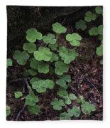 Hoh Rain Forest 3393 Fleece Blanket