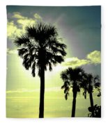 Honeymoon Island Sunset Fleece Blanket