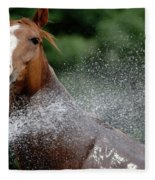 Horse Bath II Fleece Blanket