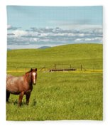 Horse Grazing Fleece Blanket