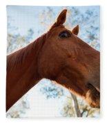Horse In The Paddock Fleece Blanket