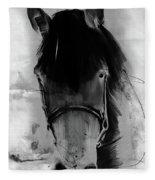 Horse Portrait  Fleece Blanket