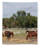 Horses Eat Hay On Ranch Fleece Blanket