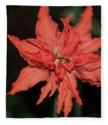 Hostal Candelaria  Fleece Blanket