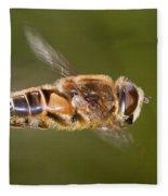 Hoverfly In Flight Fleece Blanket