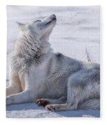 Huskies In Ilulissat, Greenland Fleece Blanket