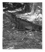 I Iguana Fleece Blanket