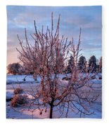 Icy Tree At Sunset  Fleece Blanket