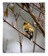 Img_0001 - American Goldfinch Fleece Blanket