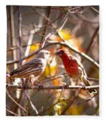Img_0001 - House Finch Fleece Blanket
