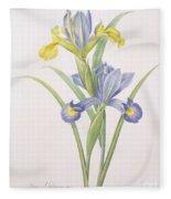 Iris Xiphium Fleece Blanket