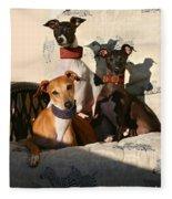 Italian Greyhounds Fleece Blanket