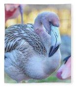 Juvenile Flamingo Fleece Blanket