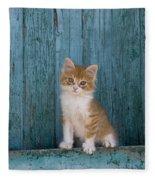 Kitten On A Greek Island Fleece Blanket