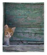 Kitten Peeking Out Fleece Blanket