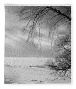 Lake Erie In Winter Fleece Blanket
