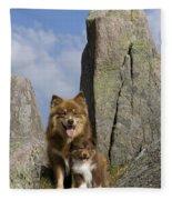 Lapinko�ra Dog And His Pup Fleece Blanket