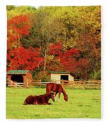Lazy Autumn Day Fleece Blanket