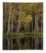 Liesilampi In September 3 Fleece Blanket