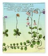 Linnaea Borealis, Linnaeuss Favorite Fleece Blanket