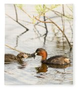 Little Grebe Tachybaptus Ruficollis Fleece Blanket