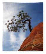 Lone Bonsai Tree In Zion Fleece Blanket
