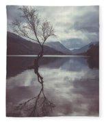 Lone Tree At Llyn Padarn Fleece Blanket