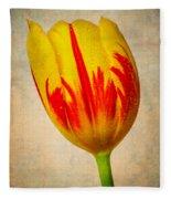 Lovely Textured Tulip Fleece Blanket