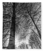 Majestic Trees Fleece Blanket