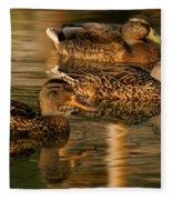 Mallards Swimming In The Water At Magic Hour Fleece Blanket