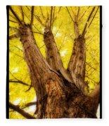 Maple Tree Portrait 2 Fleece Blanket