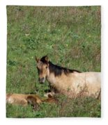 Mare And Colt Fleece Blanket