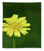 Meadow Salsify Fleece Blanket