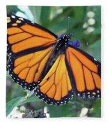 Monarch - Perfection Fleece Blanket