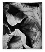 Mounts Botanical Garden 2363 Fleece Blanket