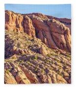 Navajo National Monument Canyons Fleece Blanket