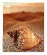 North Shore Seashell Fleece Blanket