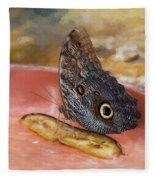 Owl Butterfly 2 Fleece Blanket by Paul Gulliver