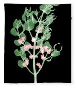 Pacific Mistletoe, Phoradendron Fleece Blanket