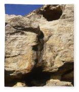 Painted Rock Fleece Blanket