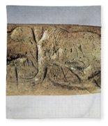 Paleolithic Tool Fleece Blanket