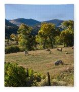 Pastural Setting Fleece Blanket