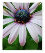 Pink African Daisy Fleece Blanket