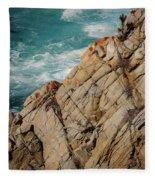 Point Lobos California Fleece Blanket