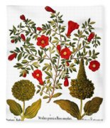 Pomegranate, 1613 Fleece Blanket