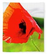 Poppy The Beauty Fleece Blanket