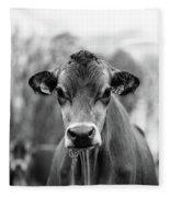 Portrait Of A Dairy Cow In The Rain Stowe Vermont Fleece Blanket