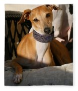 Portrait Of An Italian Greyhound Fleece Blanket