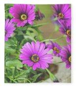 Purple Aster Flowers Fleece Blanket