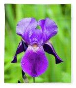 Purple Bearded Iris Fleece Blanket